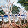 Wild Coast by Lia  Marsman