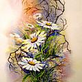 Wild Daisies by Brooke Lyman