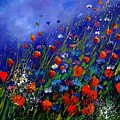 Wildflowers 78 by Pol Ledent