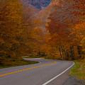 Winding Road by Robert Torkomian