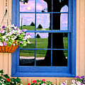 Window by Steve Karol