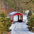 Winter Crossing by Evelina Kremsdorf