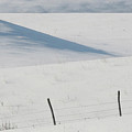 Winter Day On The Prairies by Mark Duffy