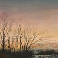 Winter Field by Stephen Bluto