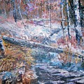 Winter Forest by Judy Groves