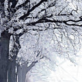 Winter In Our Street by Steve K