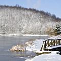Winter Lake by Thomas R Fletcher