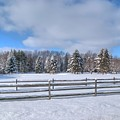Winter Scenery 14589 by Guy Whiteley