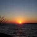 Winter Sunset  by Patrick J Maloney