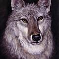 Wolf Buddy by Theresa Jefferson