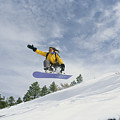 Woman Snowboarding On The Cinder Cone by Kate Thompson