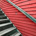 Wooden Steps Against Colourful Siding by Emilio Lovisa
