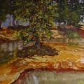 Wylie's Island by Helen Musser