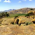 Wyoming Landscape by Marty Koch