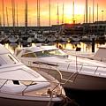 Yacht Marina by Carlos Caetano