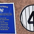 Yankee Legends Number 4 by David Lee Thompson