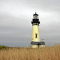 Yaquina Lighthouses - Yaquina Head Lighthouse Western Oregon by Christine Till