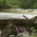 Yates Dam by Michael Peychich