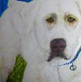 Yellow Labrador Retriever Original Acrylic Painting by Barbara Giordano