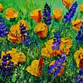 Yellow Poppies 560190 by Pol Ledent