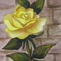Yellow Rose by Yvonne Kinney