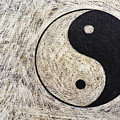 Yin And Yang Symbol On Drum by Sami Sarkis