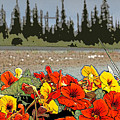 Yukon Flowers by Joselyn Holcombe