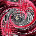 Zebra And A Rose by Patricia Januszkiewicz