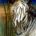 Zebra by Latonja Davis-Benson