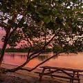 Sunrise Seating by Karin Pinkham