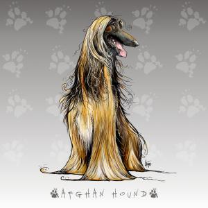 New Afghan Hound Prints Available John Lafree Fine Art