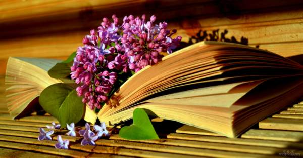 Flowers with Book