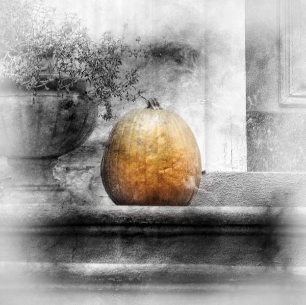 Weekly Photography Challenge Pumpkins