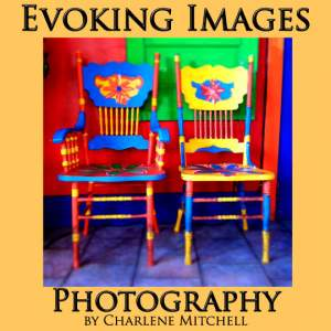 Evoking Images Photography at the Copper Queen Holiday Market in Historic Old Bisbee