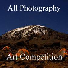 Call for Entries - All Photography Online Art Competition