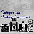Old Cameras and Photo Gear