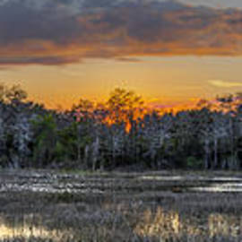 Debra and Dave Vanderlaan - Everglades Panorama