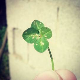 Xxx Yyy - Luck