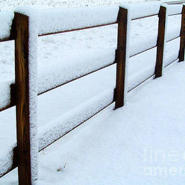 Tina M Wenger - Snowy Fence
