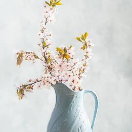 Springtime Blossom - Amanda And Christopher Elwell