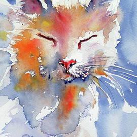 Cat - Kovacs Anna Brigitta