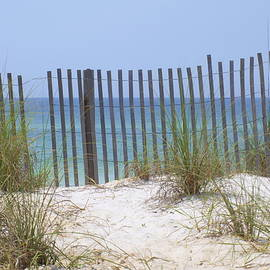 James Granberry - Beach Fence