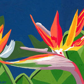 Terry Taylor - Birds of Paradise