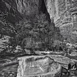 Christopher Holmes - Canyon Corner - BW