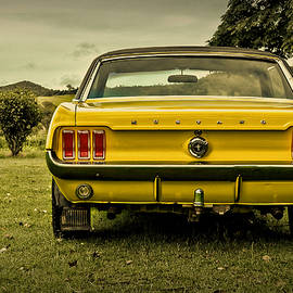 Old Yellow Mustang Rear View in Field - Design Turnpike