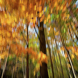Painted Autumn - Rick Berk