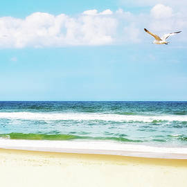Peaceful Beach With Seagull Soaring - Susan Schmitz