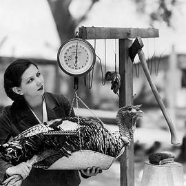 Vintage Holiday Card   Woman weighing a turkey ahead of the holidays - American School