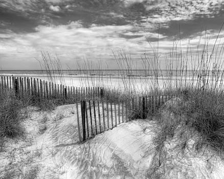 Debra and Dave Vanderlaan - Dune Fences