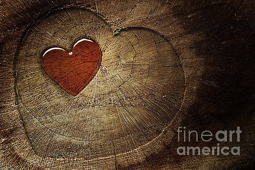 Mythja  Photography - Love text on  wooden background